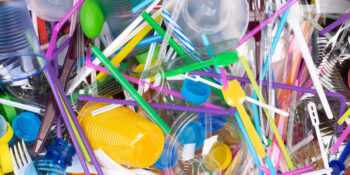 Plastic Free July - the types, toxicity and recyclability of plastics.